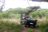 Bayete-Zulu elephant interaction & game drive - RCB007 (full day)